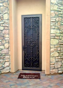 Commercial Security Screen Doors Paradise Valley